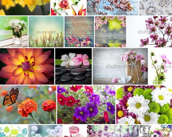 Нанести фото на цветок
